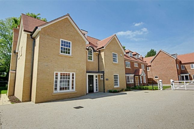 Thumbnail Detached house for sale in Springhall Road, Sawbridgeworth, Hertfordshire