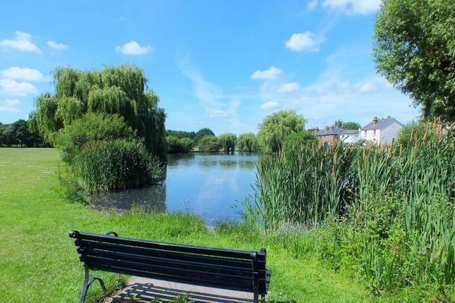 Duck Pond of Winterdown Road, Esher KT10
