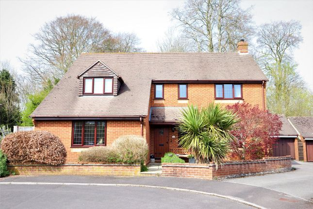 Thumbnail Detached house for sale in Old Oak Way, Winterborne Whitechurch, Blandford Forum, Dorset