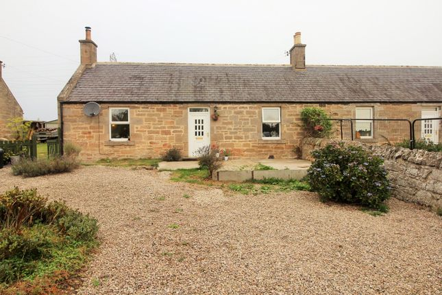 Thumbnail Semi-detached bungalow for sale in Ardgye Cottages, Alves