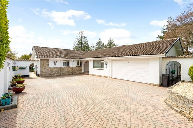 4 bed bungalow for sale in Branksome Park, Poole, Dorset BH13