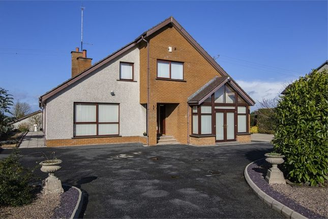 Thumbnail Detached bungalow for sale in Bleary Road, Portadown, Craigavon, County Armagh