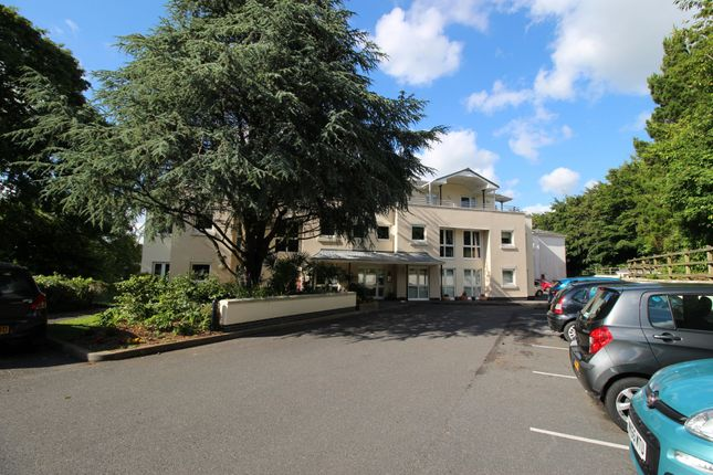 Thumbnail Flat for sale in Hillside Court, Station Road, Plympton