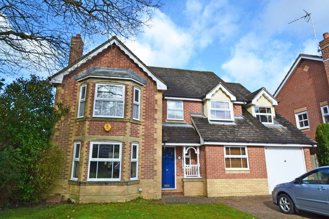 Thumbnail Detached house to rent in Wren Close, Horsham