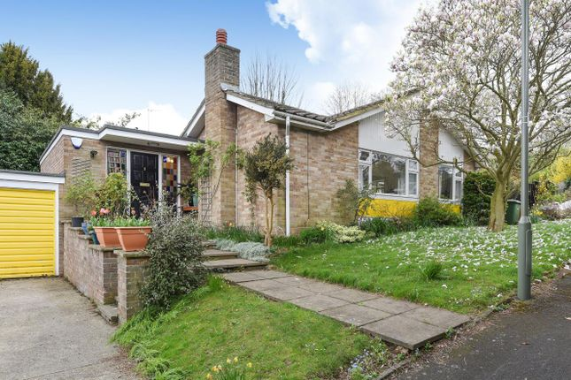 Thumbnail Bungalow to rent in Birchfield Grove, Epsom