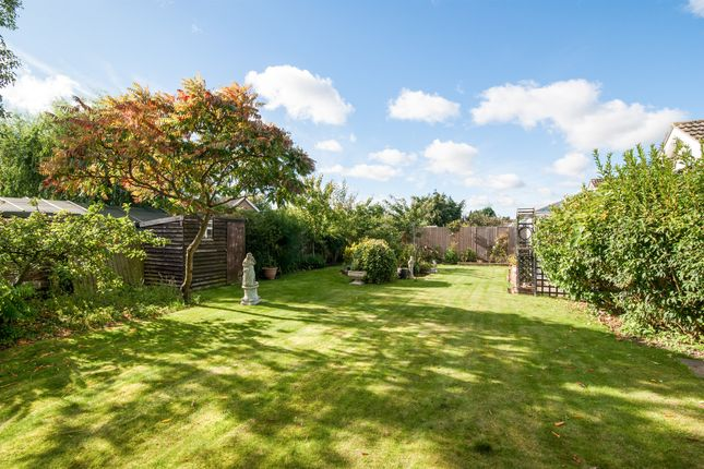 Thumbnail Detached bungalow for sale in Churchill Close, Watton, Thetford
