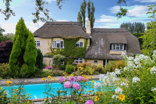 Thumbnail Cottage for sale in Ingsdon, Newton Abbot