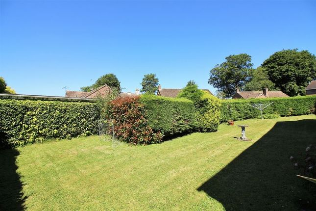 Rear Garden of Monmouth Court, Chard TA20