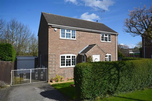 Thumbnail Detached house for sale in Foresters Road, Ripley