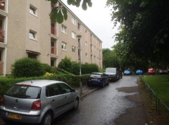 Thumbnail Flat to rent in Whitehill Street, Dennistoun, Glasgow