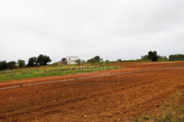 Thumbnail Finca for sale in Guia, Guia, Albufeira