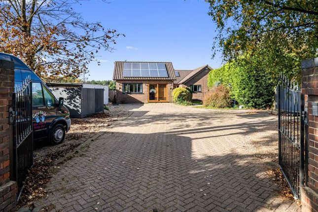 Thumbnail Detached bungalow for sale in Charing Hill, Charing, Ashford