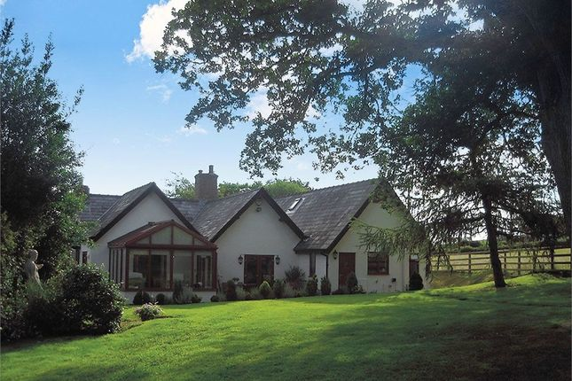 Thumbnail Detached house for sale in Nantglyn Road, Denbigh