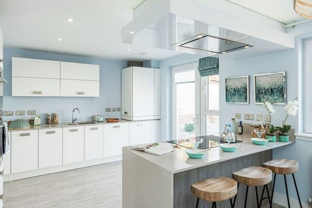 """Thumbnail Semi-detached house for sale in """"The Duffy"""" at Phoenix Rise, Gullane"""