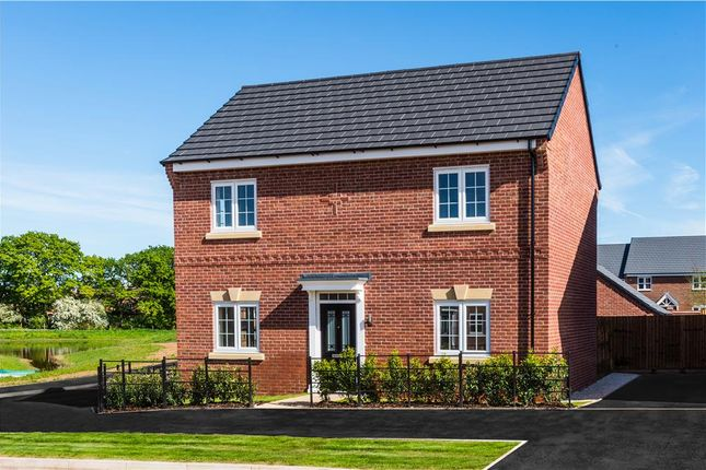 "Thumbnail Detached house for sale in ""Darley"" at Aldbury Close, Stafford"