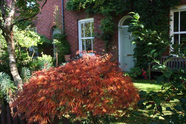 Front Gardens of Laburnum Grove, Woodbridge Road, Moseley, Birmingham B13