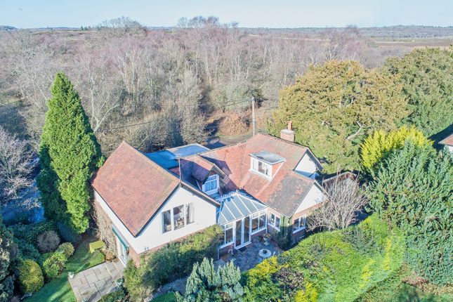 Thumbnail Detached house for sale in Beaulieu Road, Lyndhurst