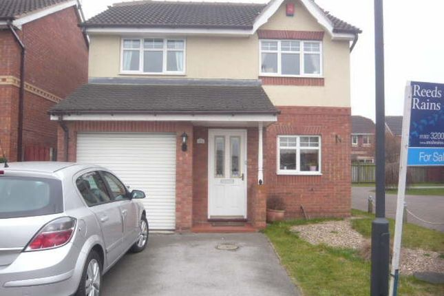 Thumbnail Detached house to rent in Fairholme View, Armthorpe, Doncaster