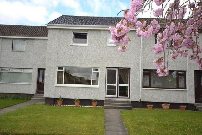 Thumbnail Terraced house to rent in Bute Drive, Perth