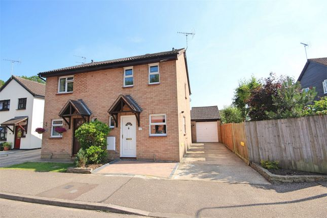 Thumbnail Semi-detached house to rent in Buttermere, Great Notley, Braintree, Essex