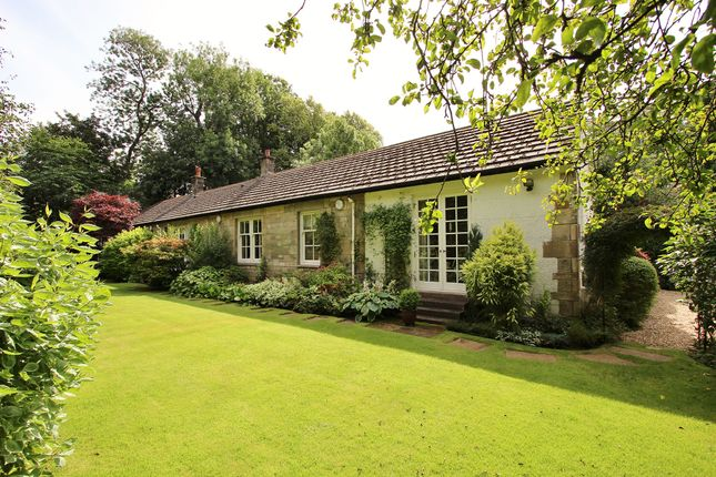 Thumbnail Detached bungalow for sale in Gleniffer Cottage, Braehead Road, Thorntonhall