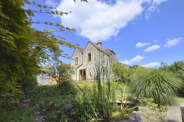 Thumbnail Detached house for sale in The Laurels, Bath Old Road, Somerset