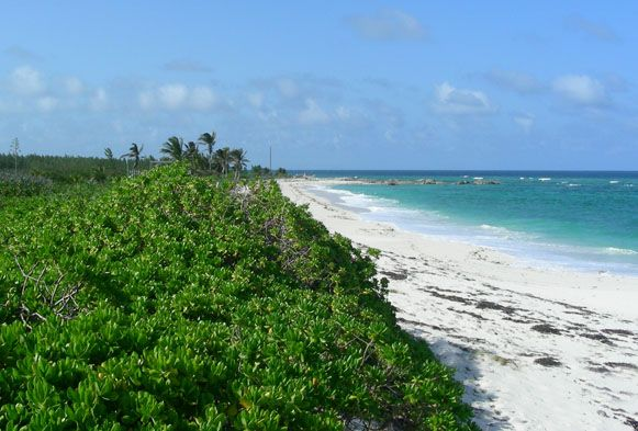 Land for sale in Lot 38, Gilpin Point, Abaco, The Bahamas