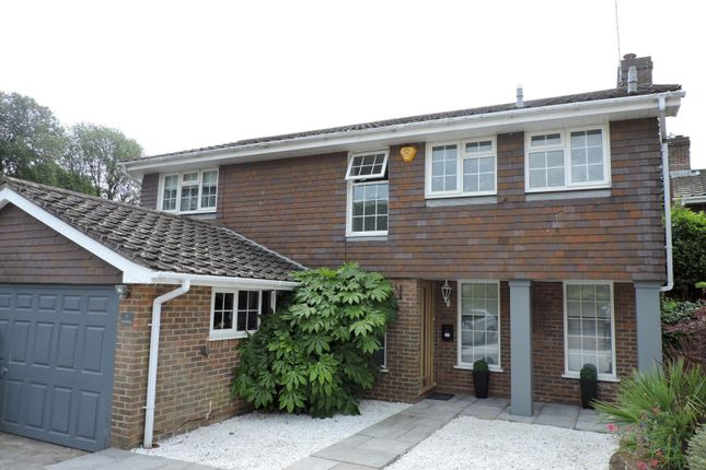 Thumbnail Detached house to rent in Chartfield, Hove