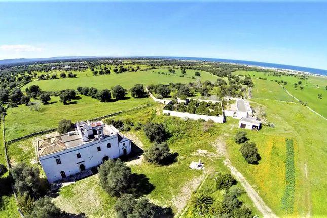 Thumbnail Farm for sale in Salento, Ostuni, Brindisi, Puglia, Italy