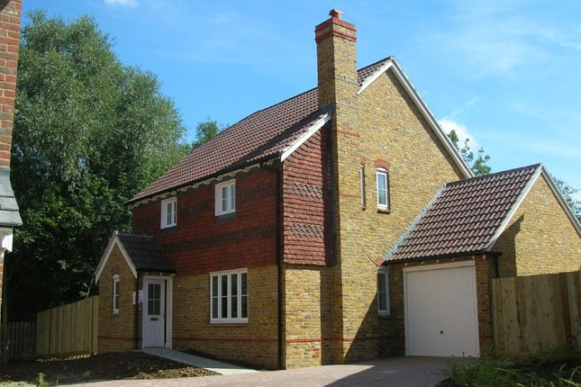 Thumbnail Detached house to rent in Greyhound Chase, Singleton, Ashford