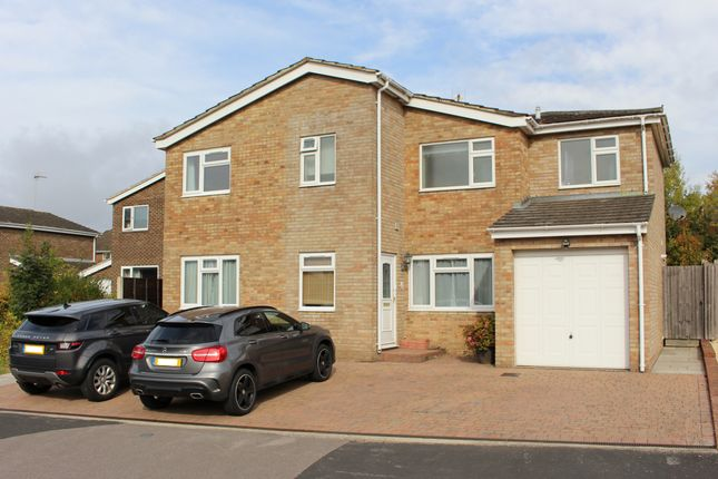 Thumbnail Detached house for sale in Corfe Close, Alresford