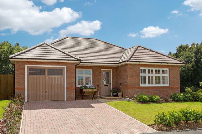 Thumbnail Bungalow for sale in Shutterton Lane, Dawlish