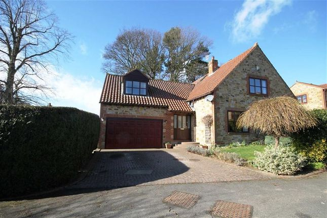 Thumbnail Detached house for sale in Witton Tower Gardens, Witton Le Wear, County Durham