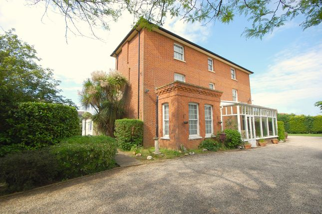Thumbnail Detached house for sale in Hall Road, Asheldham, Southminster