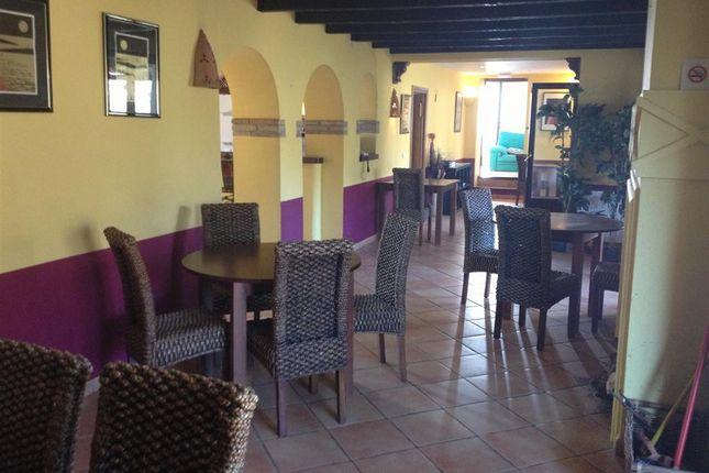 Restaurant of Gaucin, Malaga, Alameda, Málaga, Andalusia, Spain