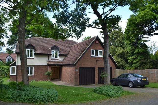 Thumbnail Detached house for sale in Bowtrees, Sunderland