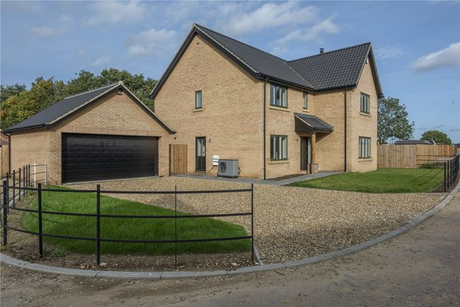 Thumbnail Detached house for sale in 10 Mill Meadow, Mill Road, Strumpshaw, Norwich