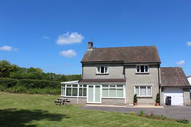 Thumbnail Detached house to rent in Heale Lane, Curry Rivel, Langport
