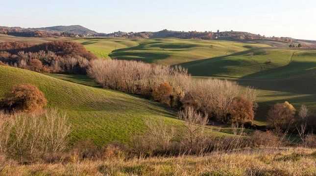 Picture No. 07 of Borgo Toscano, San Giovanni D'Asso, Tuscany