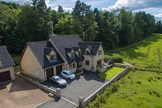 Thumbnail Detached house for sale in The Paddock., Lanark.