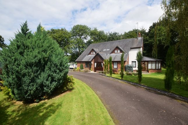 Thumbnail Detached house for sale in Maes Aeron, Ciliau Aeron, Lampeter
