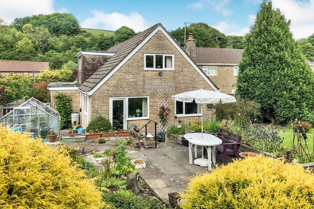 Thumbnail Bungalow for sale in Mccleod, Winterbourne Steepleton, Dorchester