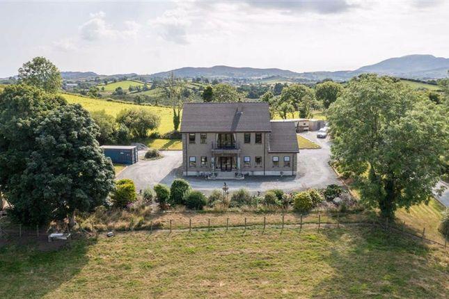 Thumbnail Detached house for sale in Flush Road, Banbridge, Down.