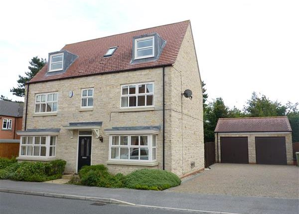 Thumbnail Detached house for sale in Peterson Drive, New Waltham, Grimsby