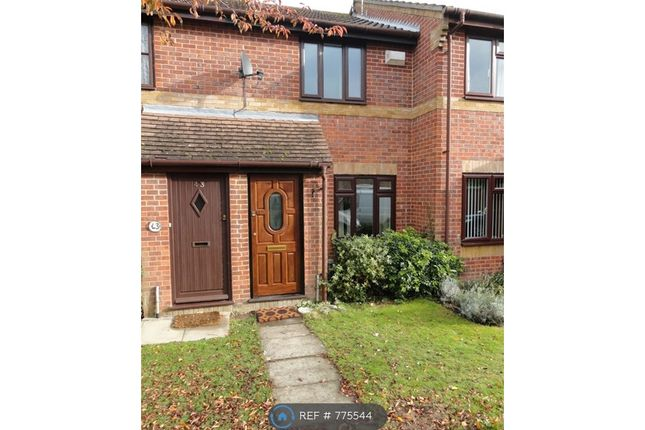 Thumbnail Terraced house to rent in Southlands, Basingstoke