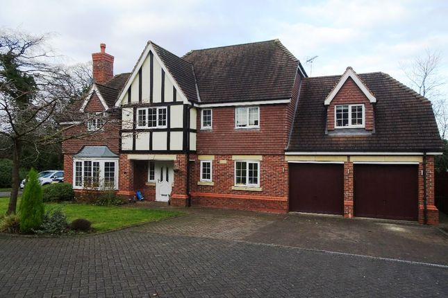 Thumbnail Detached house to rent in Nightingale Walk, The Lawns, Stallington