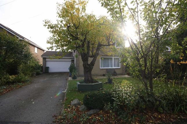 Thumbnail Detached house to rent in Alison Garth, Hedon
