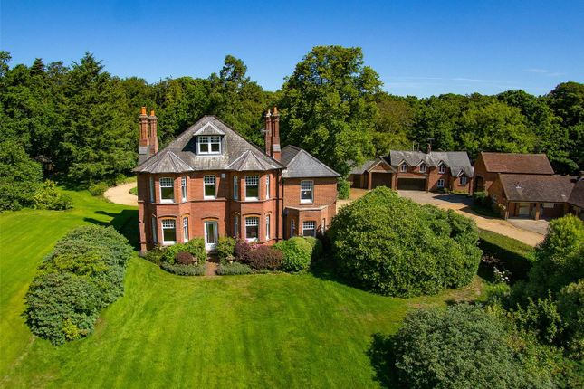 Thumbnail Detached house for sale in Beechwood Lane, Burley, Ringwood, Hampshire