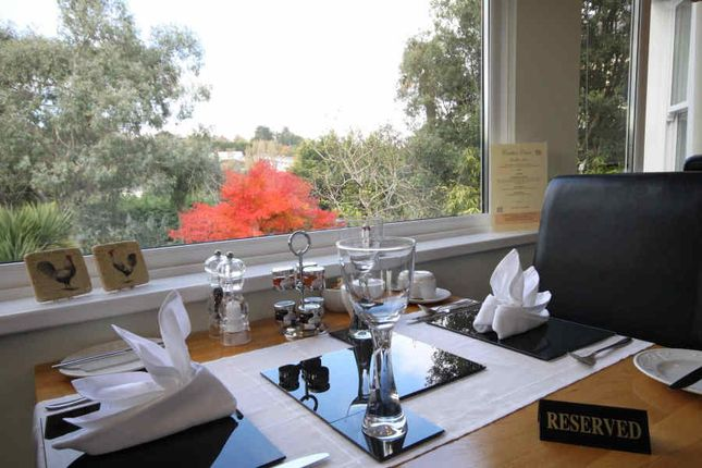 Thumbnail Hotel/guest house for sale in Cleveden Road, Torquay