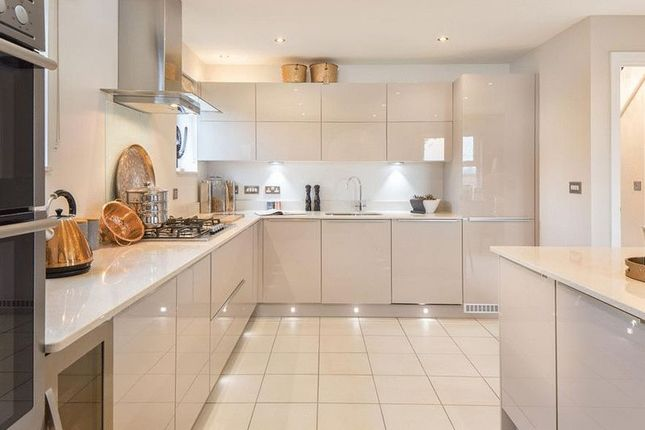 Thumbnail Property for sale in Windsor Avenue, Newton Abbot